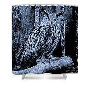 Majestic Great Horned Owl Bw Shower Curtain