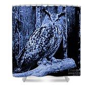 Majestic Great Horned Owl Blue Indigo Shower Curtain