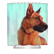 The Great Shepherd  Shower Curtain