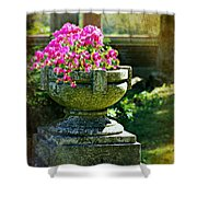 The Grecian Urn Shower Curtain
