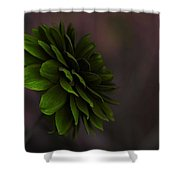 The Green Flower Shower Curtain