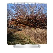 The Green Grass Road Shower Curtain