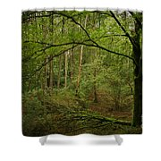 The Green Tree Shower Curtain