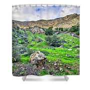 The Greening Of The Las Llajas Trail  Shower Curtain