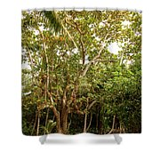 The Greeter Shower Curtain