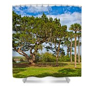 The Grounds Of The Kingsley Plantation Shower Curtain