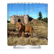 The Guard Of The Ruins 22 Shower Curtain