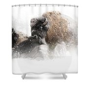 The Guardian II Falling Snow Shower Curtain