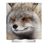 The Handsome Cross Fox Male Shower Curtain