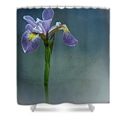 The Harlem Meer Iris Shower Curtain