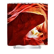 The Heart And The Dog Shower Curtain