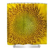 The Heart Of The Sunflower Shower Curtain