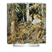 The Hermit. Il Solitario Shower Curtain