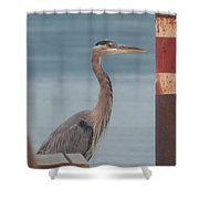 The Heron Of The Doc Shower Curtain