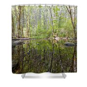 The Hike To Falls Creek Falls Shower Curtain