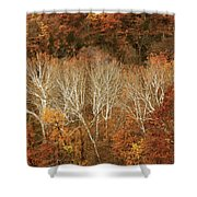 The Hills In Autumn Shower Curtain