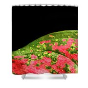 The Hills Of Mars Shower Curtain
