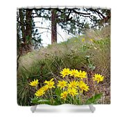 The Hillsides Are Alive Shower Curtain