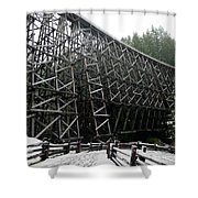 The Historic Kinsol Trestle 3. Shower Curtain