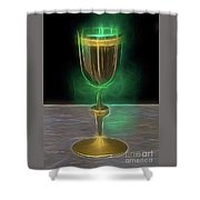 The Holy Grail By Raphael Terra Shower Curtain