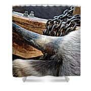 The Horn Of The Beast Shower Curtain