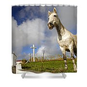 The Horse And The Chapel Shower Curtain