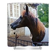The Horse In The City Shower Curtain