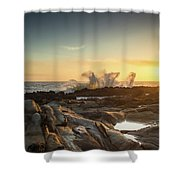 The Horses Arrive Shower Curtain