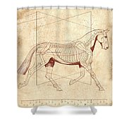 The Horse's Trot Revealed Shower Curtain