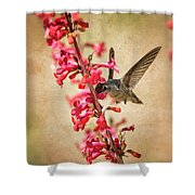The Hummingbird And The Spring Flowers  Shower Curtain