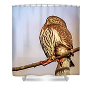 The Hunter Shower Curtain