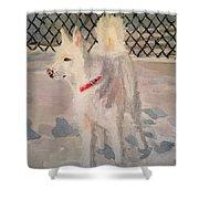 The Husky Shower Curtain by Danielle Allard