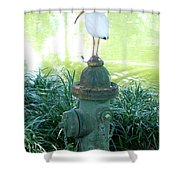 The Hydrant Bird Shower Curtain
