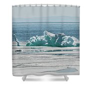 The Ice Elephant Of Silver Islet Shower Curtain