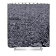 The Ice Float Shower Curtain