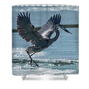 The Ice Skater Shower Curtain