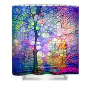 The Imagination Of Trees Shower Curtain