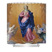 The Immaculate Conceptio Shower Curtain
