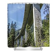 The Imperial Highway On The Forest Moon Of Endor Shower Curtain