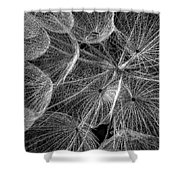The Inner Weed 2 Monochrome Shower Curtain