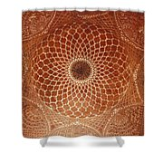 The Intricate Inlay And Carving Shower Curtain