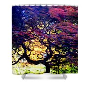 The Japanese Maple Shower Curtain