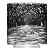 Live Oaks Lane With Shadows - Black And White Shower Curtain
