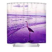 The Joy Of Ocean And Bird 2 Shower Curtain