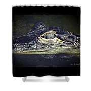 The Juvy Shower Curtain