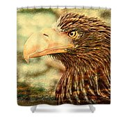 The King Of The Skies Shower Curtain