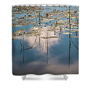 The Kingdom Of The Crucian Carp Shower Curtain