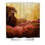 The Labrador Shower Curtain