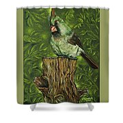 The Lady Waits Shower Curtain