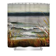 The Lake Shore Shower Curtain